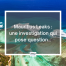 Mauritius Leaks cover article blog iPRO